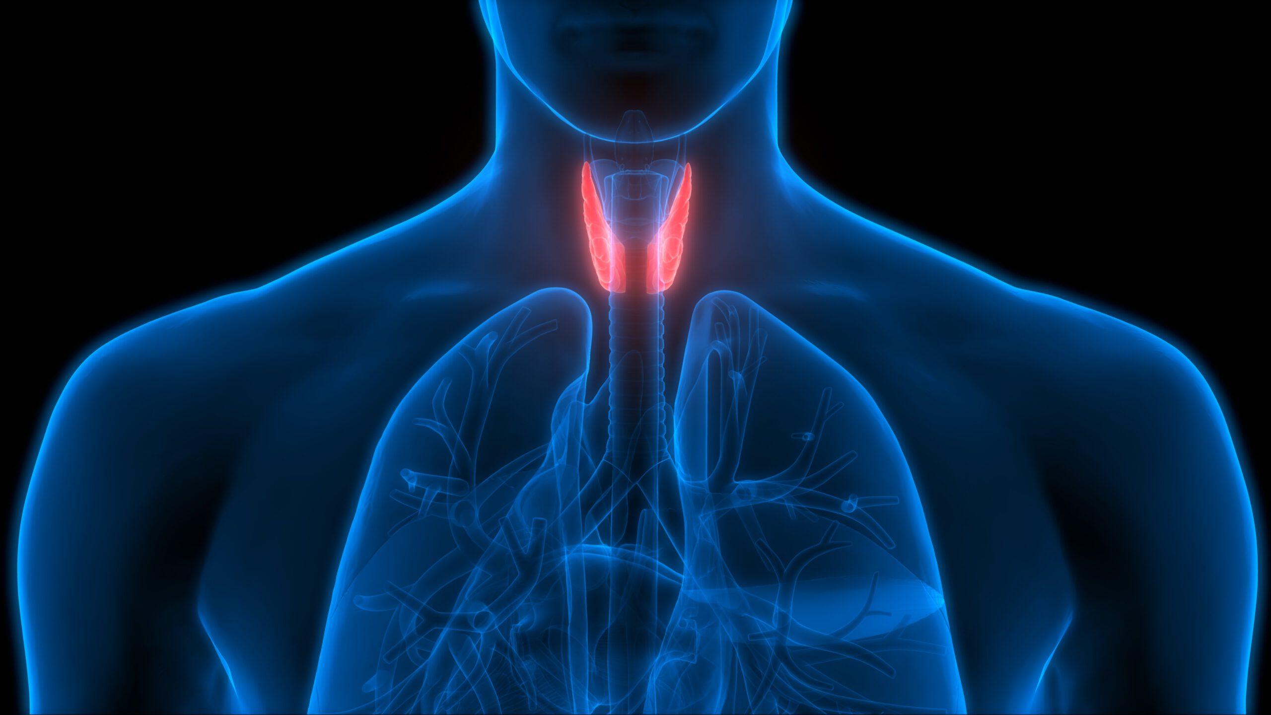 tiroid-nedir-tiroid-belirtileri-nedenleri-ve-tedavisi
